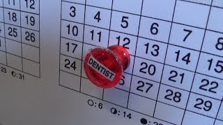 Magnetic Yearly Overview Calendar