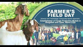 Pagpaparami ng mga halamang pagkain ng mga hayop, itinuro sa mga magsasaka sa Bongabon