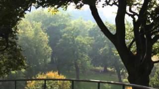JR&PH7 - Dreams feat. Kaze & Egdar Allen Floe (Waxolutionists Remix)
