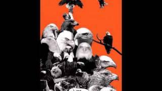 Eagulls - Fifteen