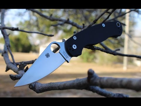 Spyderco Paramilitary 2 Knife Review (The Definitive Spyderco!)