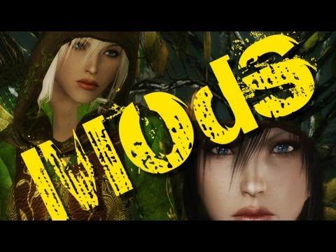 Skyrim mods: Followers Focus #2
