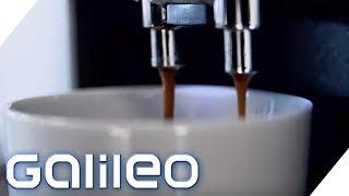 Warum Kaffee (fast) alles kann | Galileo | ProSieben