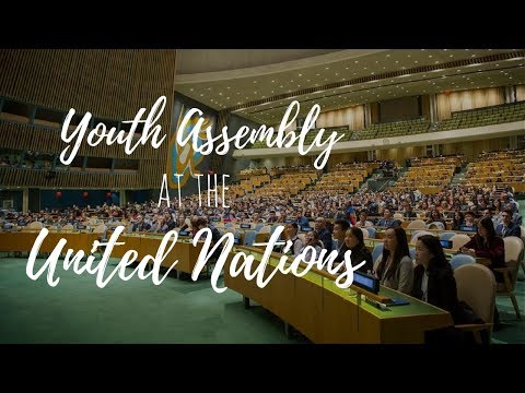 My advice to young aspiring activists | UN Youth Assembly vlog