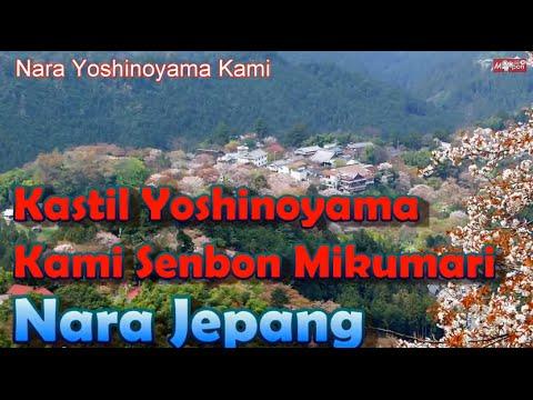 Wisata Jepang Yoshinoyama Kami Senbon Pemandangan Indah Kuil