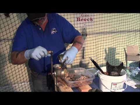 Video Shrimp bait for catfish