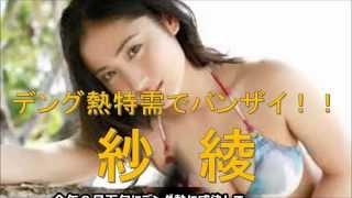 デング熱に感染して話題となった紗綾さんだが、完治して思わぬ特需にう...