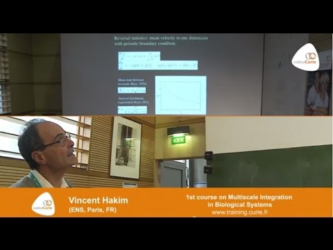 "Vincent Hakim: ""Models of collective cell motion"""