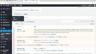 フェイスブック広告 ピクセルコードをWordPressに設定する方法