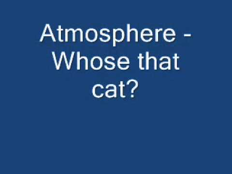 Atmosphere - Whose that cat