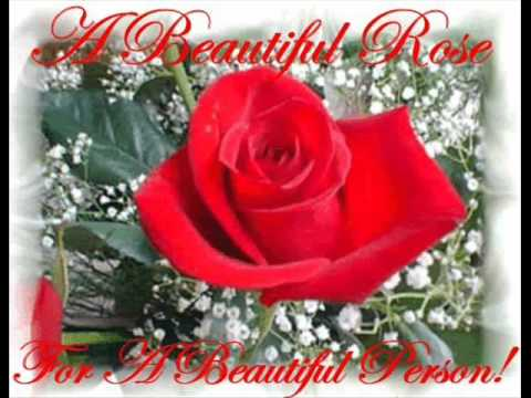 Happy Birthday Musti Warm Wishes From Two Alice In Polishwmv