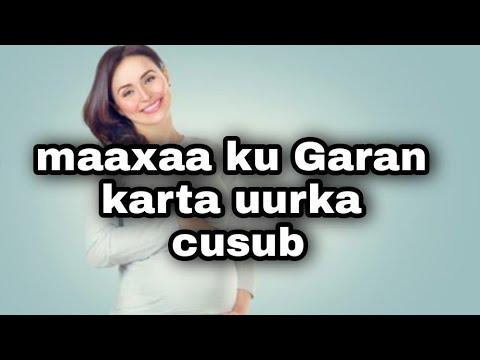 Download calamadaha lagu garto uurka bilowga ah