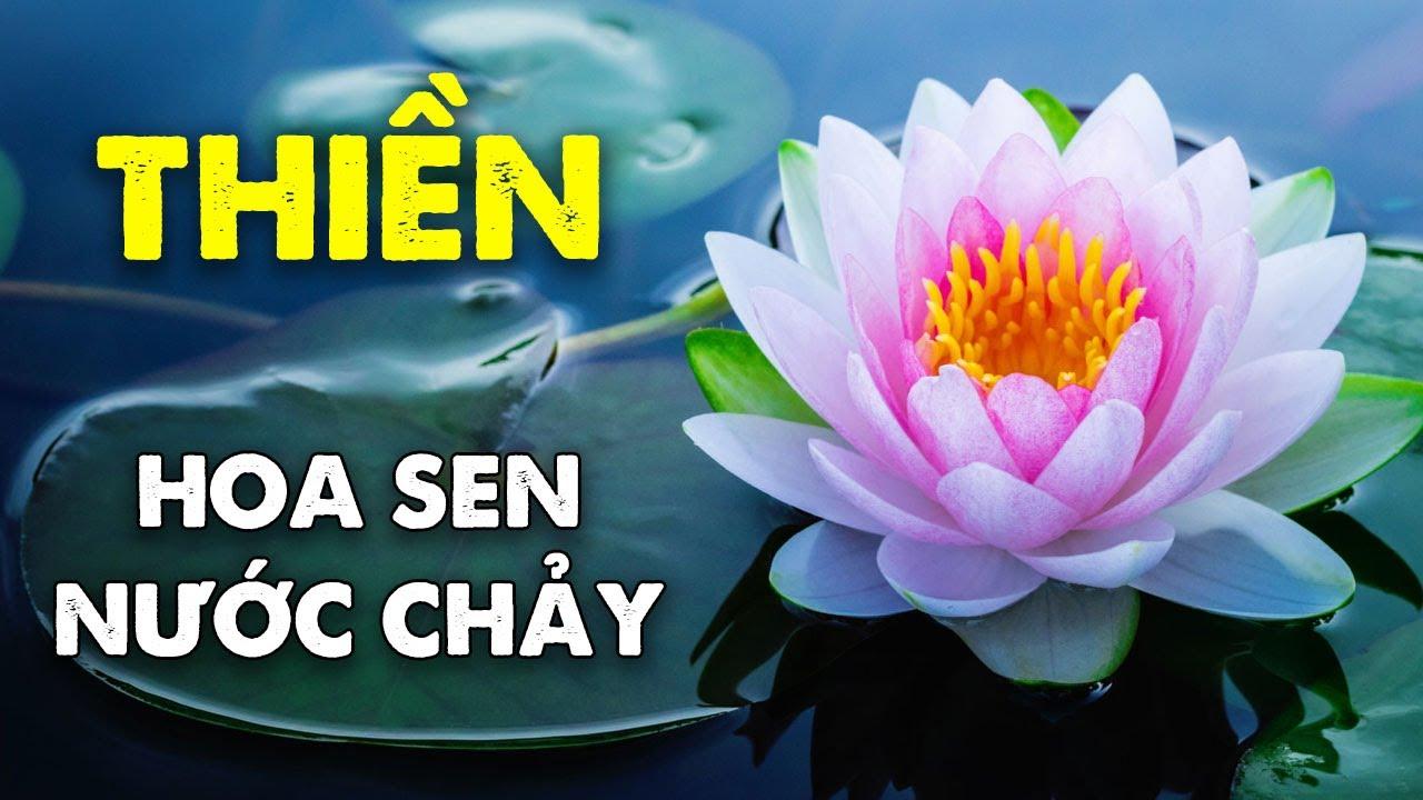 Nhạc Thiền Tịnh Tâm An Nhiên Tự Tại – Nhạc Thiền Hoa Sen Nước Chảy