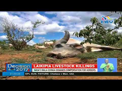 Raila Odinga demands compensation for Laikipia herders