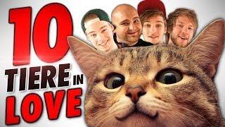 10 TIERE BEIM PAAREN! (feat. Taddl und Ardy)