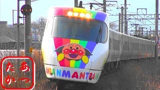 【大遅延の列車交換 特急しおかぜ いしづち】JR四国8000系電車