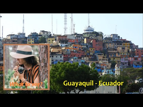WHAT TO SEE IN Guayaquil, Ecuador