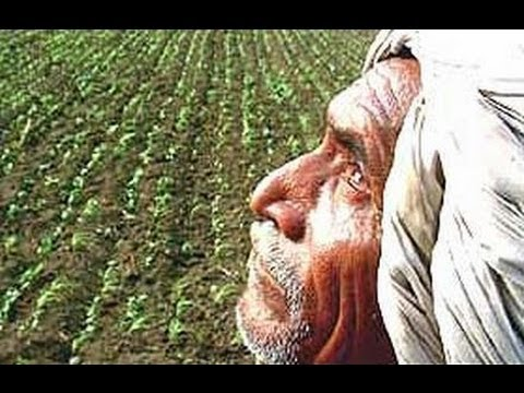 about farmers in india in hindi Farmers' suicide in india: agrarian crisis, path of development and politics in karnataka this paper dwells on the condition of the indian peasantry in a liberal world of economic development gender farmer's and fisherman's association, an agricultural lobbying group.