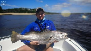 The SOURCE of The LARGEST COB/MULLOWAY in South Africa (Breede River)