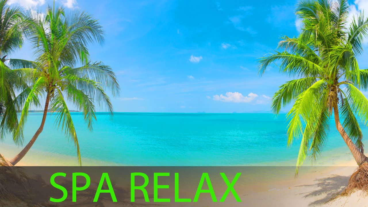 8 Hour Super Relaxing Spa Music: Massage Music, Background Music, Relaxing Music ☯391
