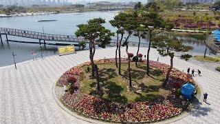 호수공원 봄꽃과 풍경-…