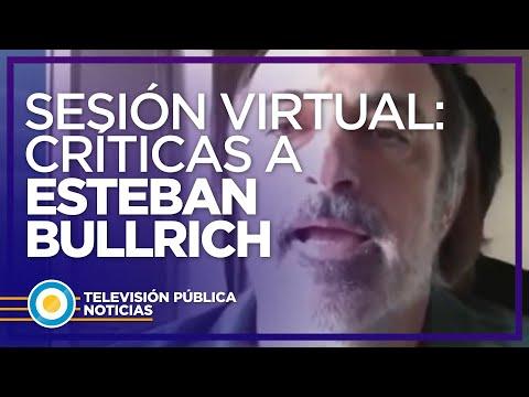 Bullrich justificó el uso de un fondo de pantallaen la reunión virtual de comisión