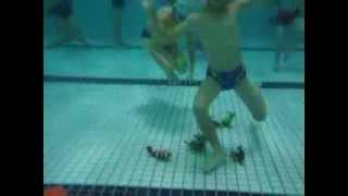 人人伊藤萬游泳學校--小朋友游泳教學-潛水動物DIVE ANIMALS-SWIMMING POOL GAMES