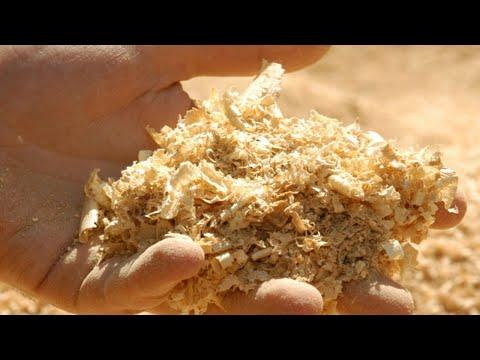 Вопрос: Свежий опил от всех ли видов деревьев закисляет почву?