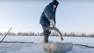 Как живет рыбак на Крайнем Севере. Зимняя рыбалка на щуку 2021. Рыбалка сетями. Азовы здесь тихие