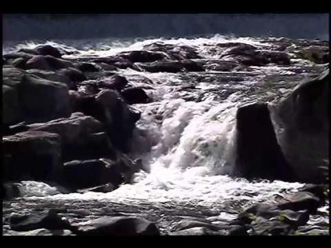 Loving the World - A Meditation with Deepak Chopra