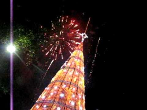 Arbol de navidad mas grande del mundo gdf youtube for Arbol mas grande del mundo