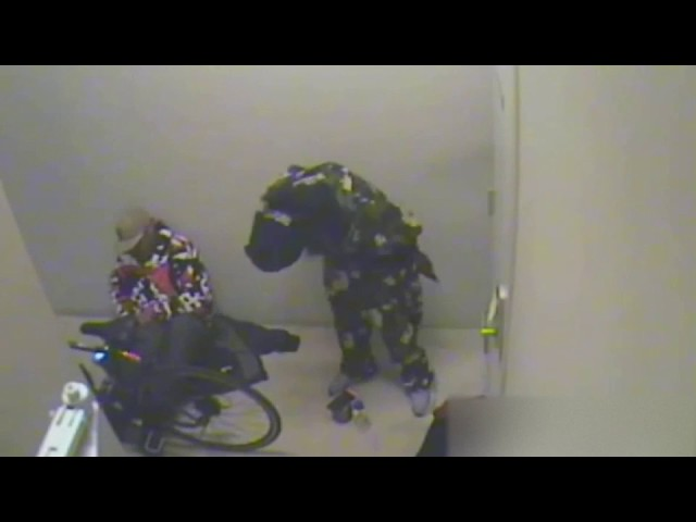 Intruders Caught on the camera | Aclarity Systems