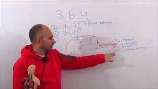 Парадоксальные вероятность - закон больших чисел 3