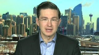 Poilievre: 'We need a leader who can stand up, fight back and win'