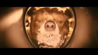 Paddington: Re-Created Movie Trailer