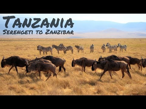 TANZANIA - A Cinematic Journey