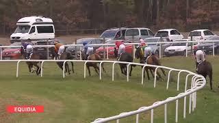Vidéo de la course PMU PRIX DE LA ROUTE RONDE