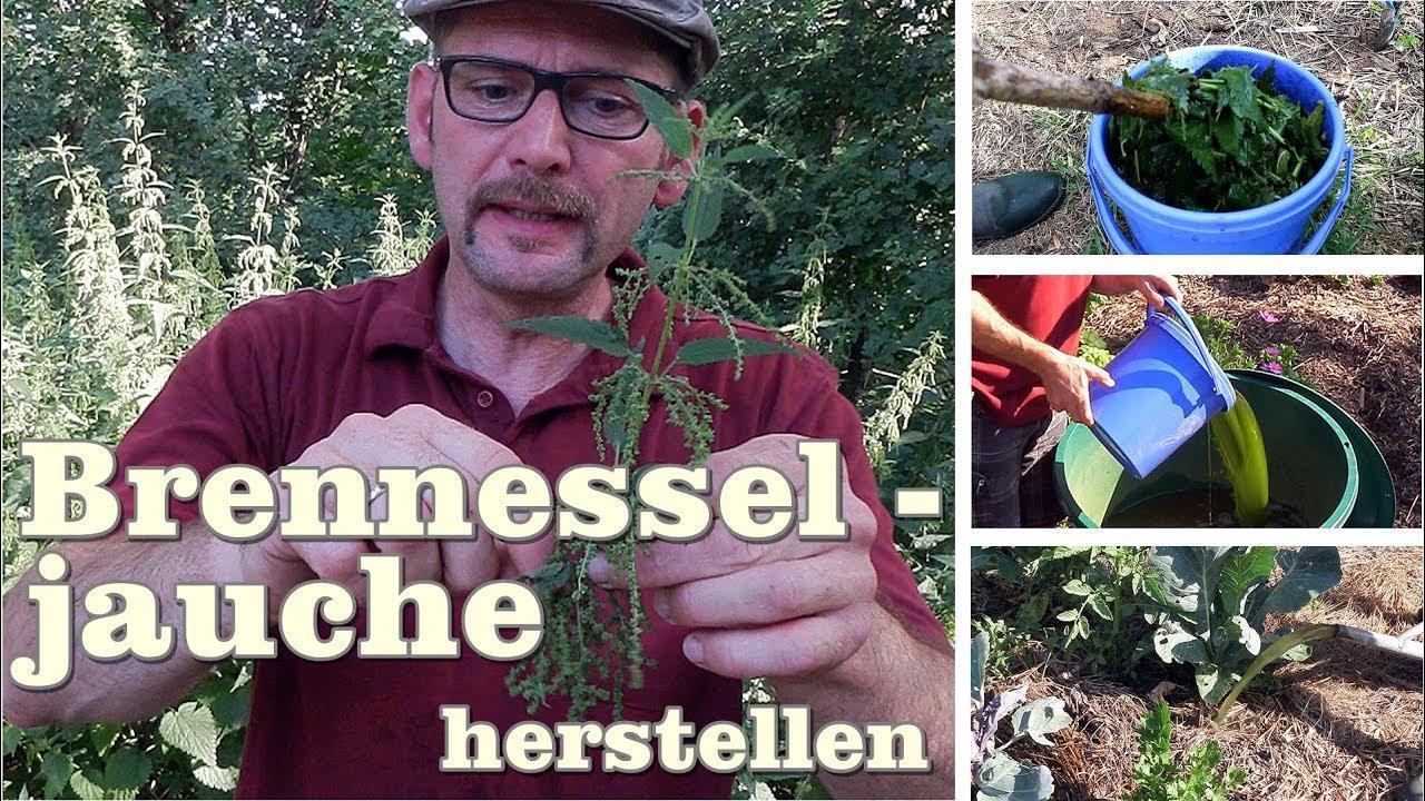 Bevorzugt Brennesseljauche herstellen, Gartentipp April 0414 - YouTube TK64