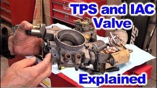 How the Throttle Position Sensor  (TPS)  and Idle Air Control Valve  (IAC)  Work