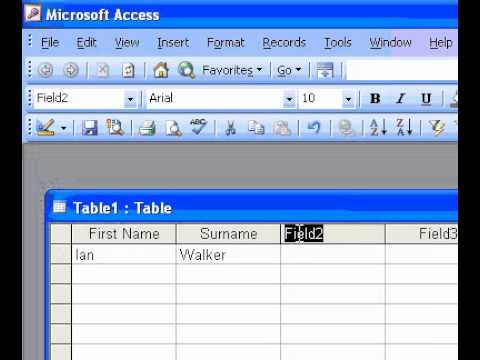 Microsoft Office Access 2003 Create a table by entering data in a