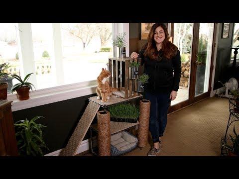 How I Made a Cat Tower Garden! 💚🛠🐈🌿// Garden Answer