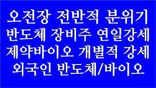 [주식투자]오전장 전반적 분위기(반도체장비주 연일강세/…