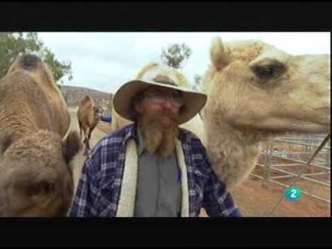 Australia canal viajar