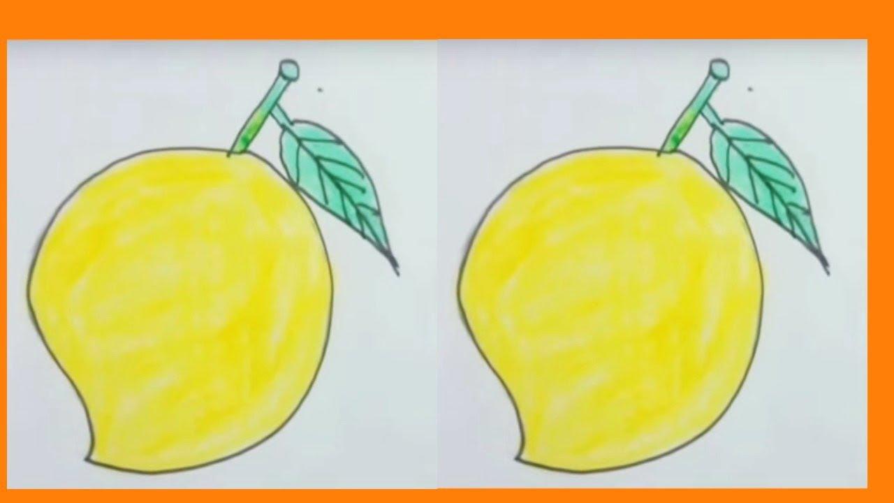 How To Draw Mango With Basic Shapes Mango Drawing Easy Mango