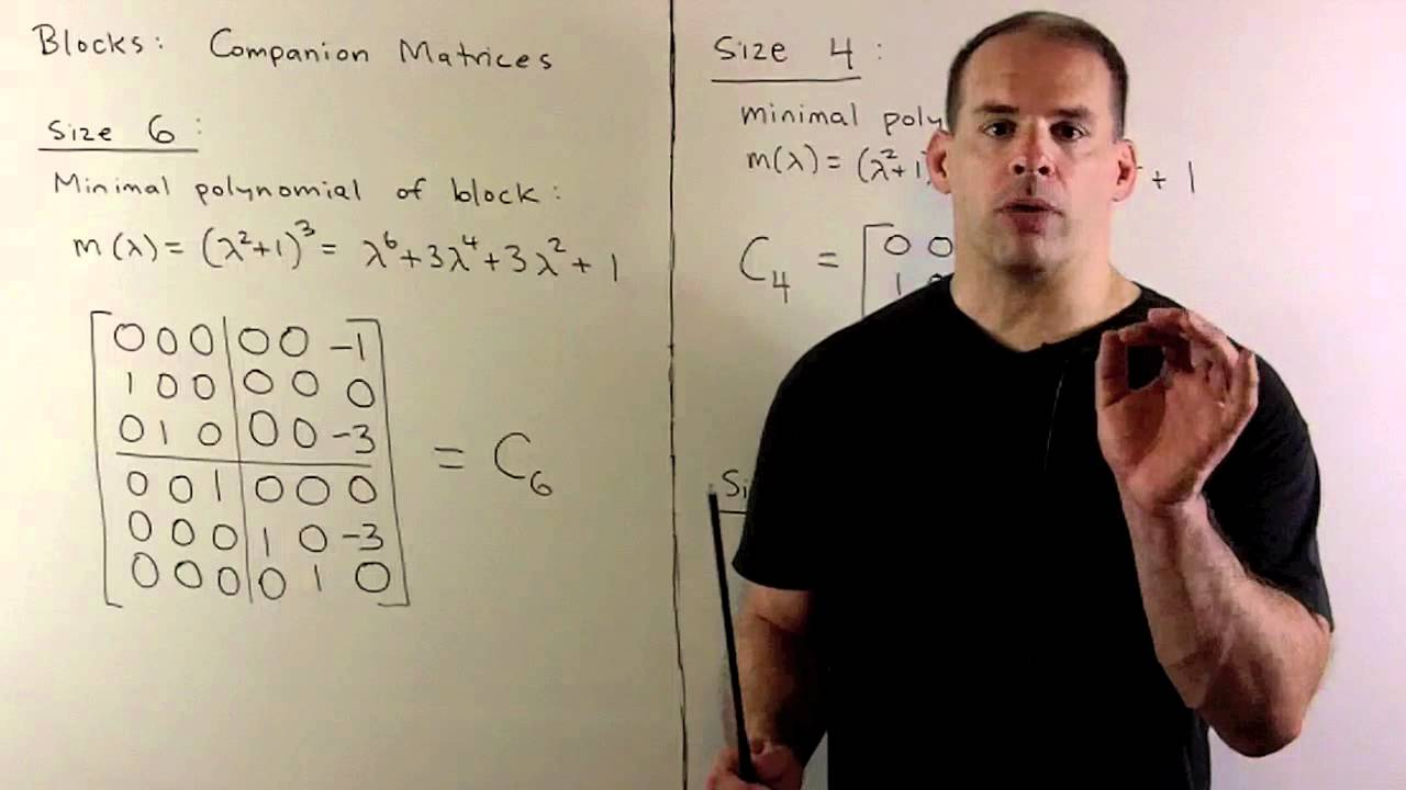 Example of Rational Canonical Form 2: Several Blocks - YouTube