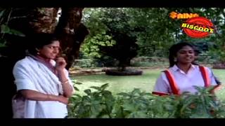 Chembarathipoove | Malayalam Movie Songs | Shyaama (1986)