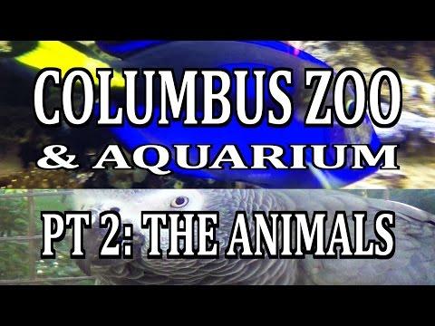 Columbus Zoo & Aquarium Pt 2: THE ANIMALS