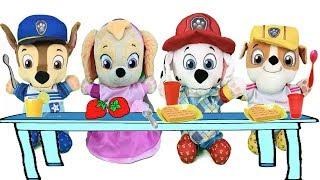 Paw patrol bebes en español: rutina de mañana antes de la guarderia infantil.Videos de juguetes