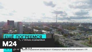 Смотреть видео Тепло и дождливо будет в Москве 21 октября - Москва 24 онлайн