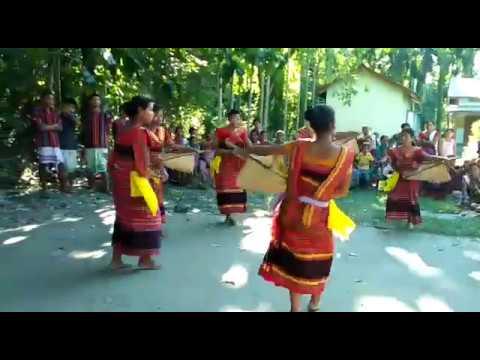 Cho Jang (hajong Folk Song Dance) ||Bijni,assam||